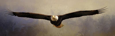 Photograph - Proud Momma Bald Eagle Art by Jai Johnson
