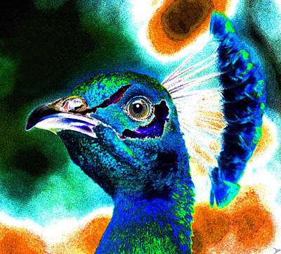 Painting - Proud Peacock by David Lee Thompson