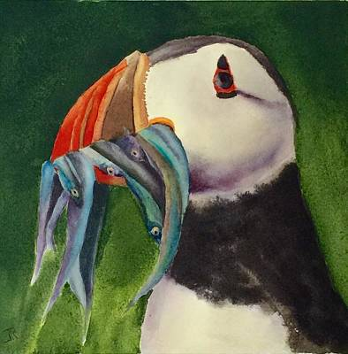 Painting - Proud Puffin by June Rollins