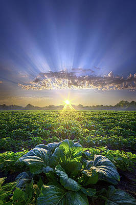 Photograph - Proud To Be An American by Phil Koch