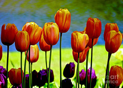 Proud Tulips Art Print