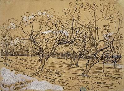 Painting - Provencal Orchard Arles  March - April 1888 Vincent Van Gogh 1853  1890 by Artistic Panda