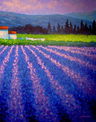 Lavender Fields Painting - Provence by John  Nolan