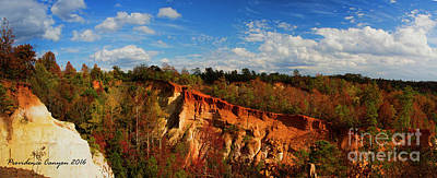 Photograph - Providence Canyon Panorama by Barbara Bowen