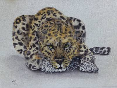 Painting - Prowling Leopard by Kelly Mills
