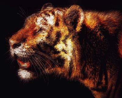 Painting - Prowling Tiger by Mark Taylor