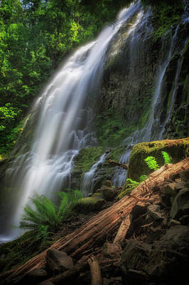 Art Print featuring the photograph Proxy Falls by Cat Connor