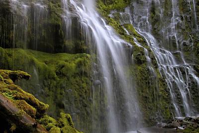 Photograph - Proxy Falls Closeup by David Gn