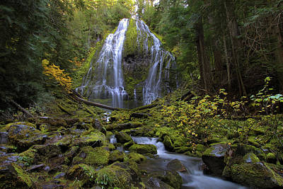 Stream Photograph - Proxy Falls by David Gn
