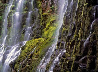 Waterfalls Photograph - Proxy Falls by Leland D Howard
