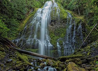 Photograph - Proxy Falls by Loree Johnson