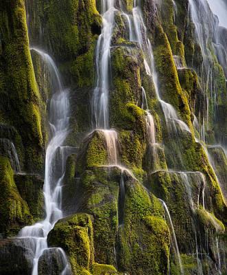 Fall Photograph - Proxy Falls Textures by Leland D Howard