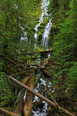 Canon 6d Photograph - Proxy Falls by Thomas Hall