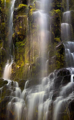 Photograph - Proxy Falls Vertical Textures by Leland D Howard
