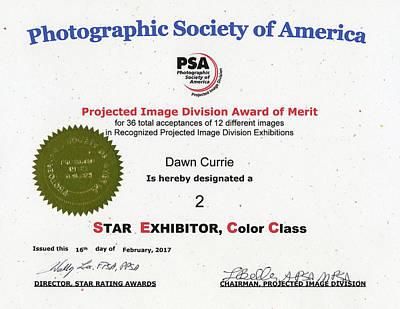 Photograph - P S A - P I D C Two Star Exhibitor by Dawn Currie