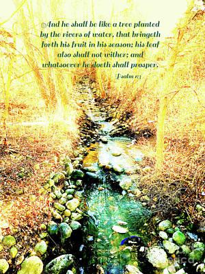 Railroad - Psalm 1 v 3 by Debbie Nobile