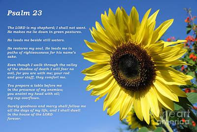 Photograph - Psalm 23 by Gary Whitton