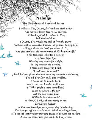 Digital Art - Psalm 30 by Trilby Cole