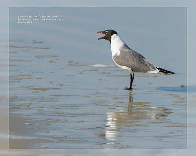 Photograph - Psalm 40 1 by Dawn Currie