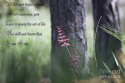 Photograph - Psalm 46 by Dale Powell