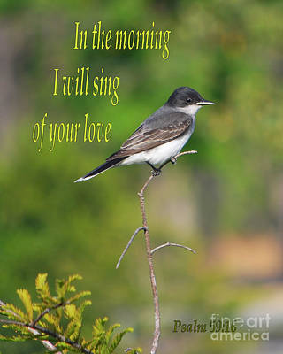 Photograph - Psalm 59 by Bob Sample