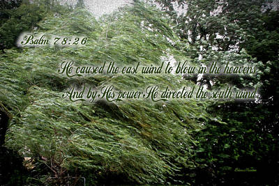 Photograph - Psalm 78-26 by Ericamaxine Price