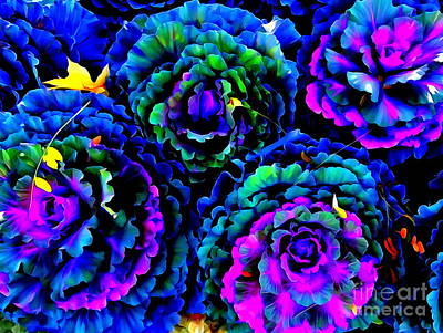 Photograph - Psychedelic Cabbages by Ed Weidman