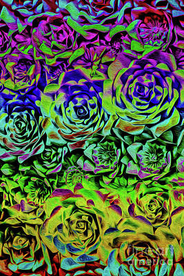 Photograph - Psychedelic Flower Rows by Sandy Moulder