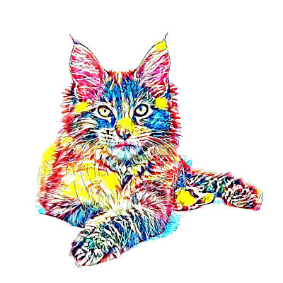 Coon Cat Digital Art - Colorful Maine Coon by John Thompson