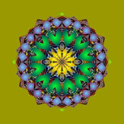 Digital Art - Psychedelic Mandala 003 A by Larry Capra