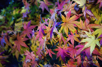 Psychedelic Maple Art Print by Kaye Menner