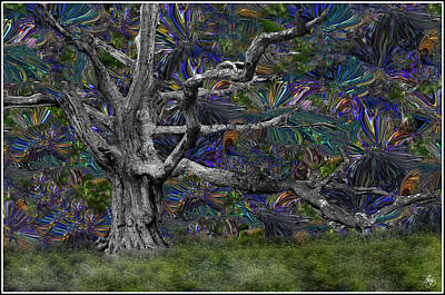 Photograph - Psychedelic Oak by Wayne King
