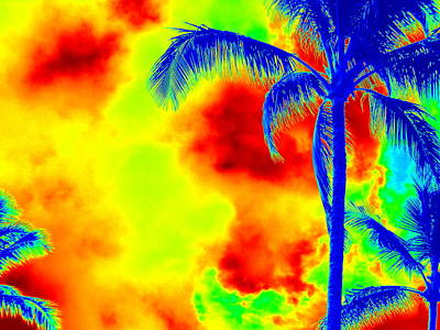 Photograph - Psychedelic Sky And Palms by Karen J Shine