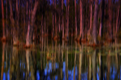 Psychedelic Swamp Trees Art Print