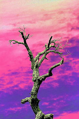 Psychedelic Tree Art Print by Richard Patmore