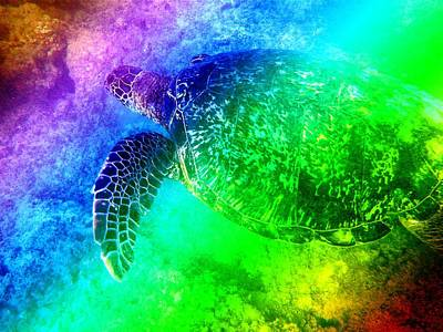 Photograph - Psychedelic Turtle by Erika Swartzkopf