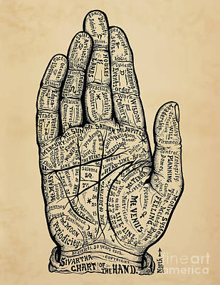 Human Brain Drawing - Psychology Chart Of The Hand by Safran Fine Art