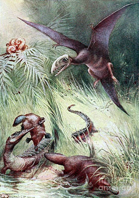 Platypus Photograph - Pterodactyl And Teleosaurus Eating by Biodiversity Heritage Library