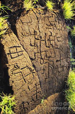 Hawaiian Artifacts Photograph - Puako Petroglyphs by Mary Van de Ven - Printscapes