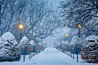 Winter Photograph - Public Garden Walk by Susan Cole Kelly