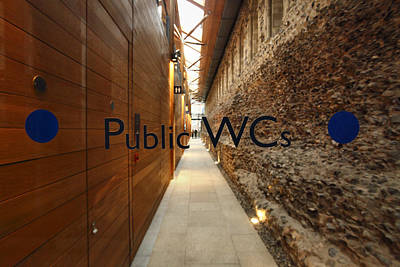 Catherdral Photograph - Public Toilet 001 by Marcus Kett