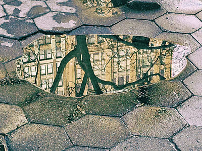 Photograph - Puddle Reflections by Cate Franklyn