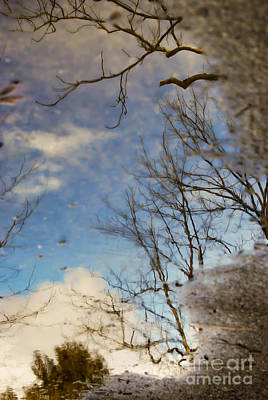 Photograph - Puddle Reflections by Kerri Farley