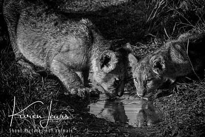 Art Print featuring the photograph Puddle Time by Karen Lewis