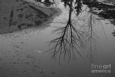 Photograph - Puddles by Ann E Robson