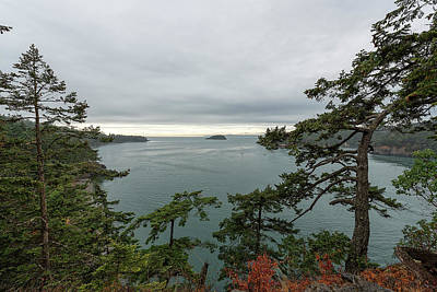 Photograph - Pudget Sound by Sabine Edrissi