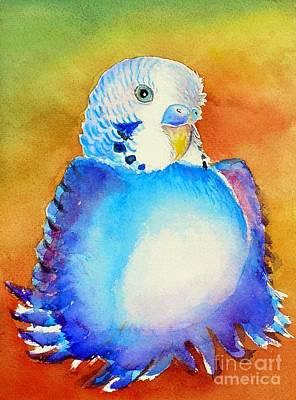 Pudgy Budgie Art Print