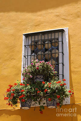 Photograph - Puebla Window Mexico by John  Mitchell