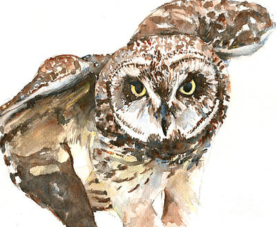 Painting - Pueo Hawaiian Owl by Claudia Hafner