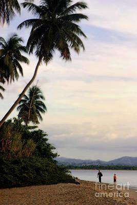 Puerto Rico Palms Art Print by Madeline Ellis